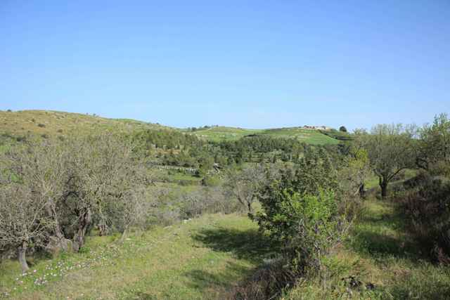 countryside ragusa land
